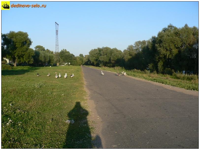 Фото dedinovo-selo.ru_DedinLandscape_00008.jpg