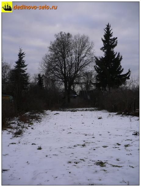 Фото dedinovo-selo.ru_Winter_00008.jpg