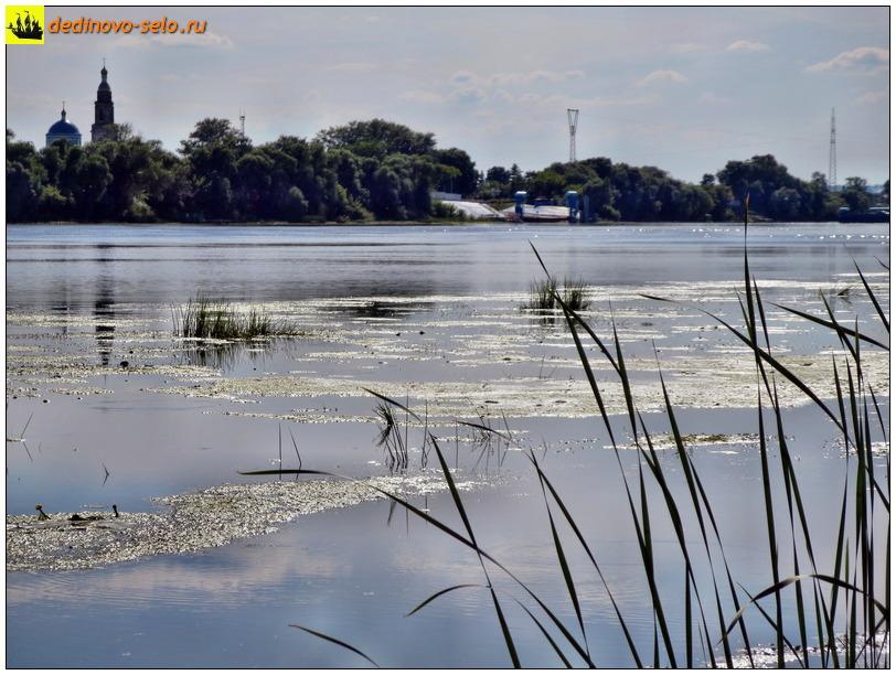 Фото dedinovo-selo.ru_Ferry2016_00015.jpg
