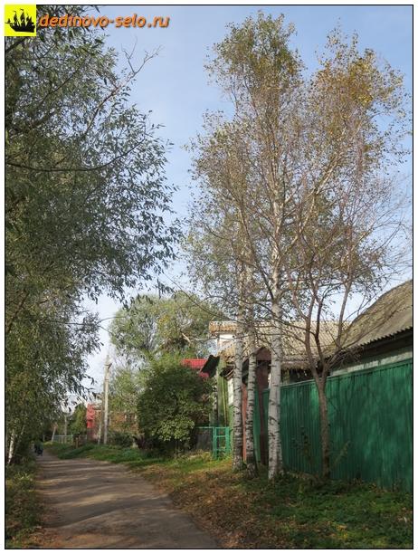 Фото dedinovo-selo.ru_HousesAndStreets-2015_00089.jpg