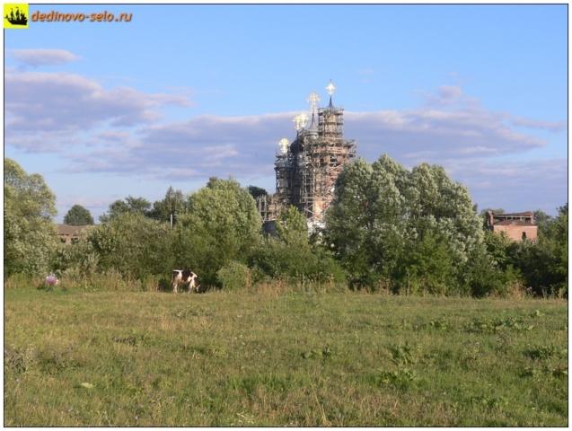 Корова в селе Дединово, напротив Троицкой церкви