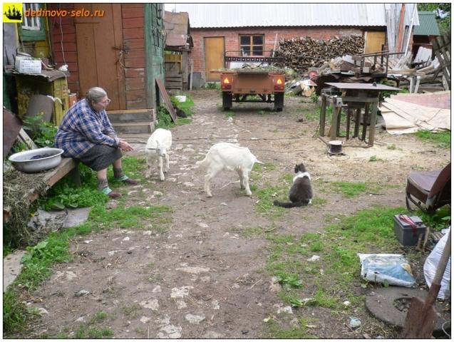 На дворе, село Дединово