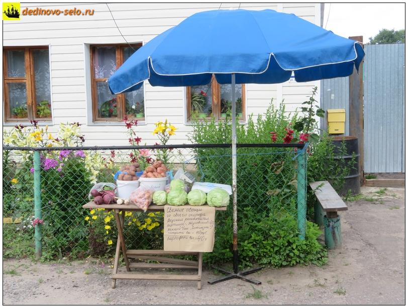Фото dedinovo-selo.ru_TradeInVegetablesOnOktyabrskayaStreet_00005.jpg