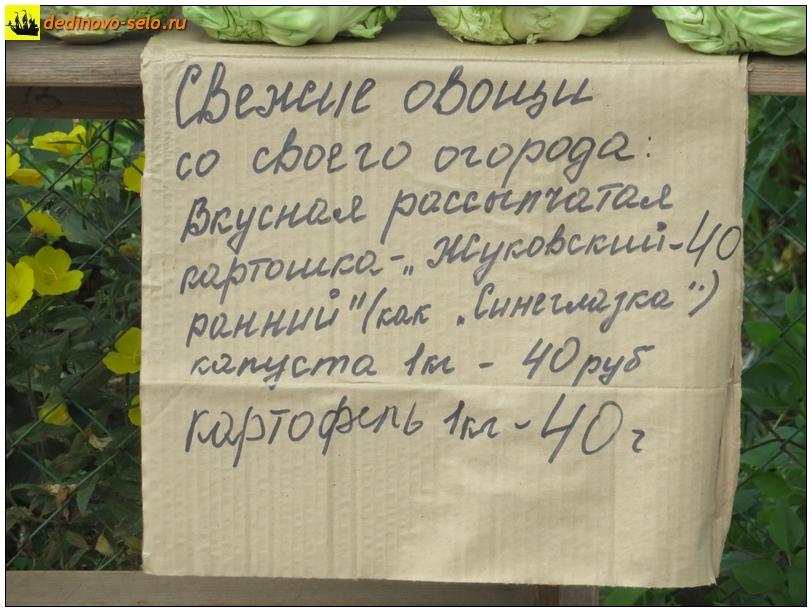 Фото dedinovo-selo.ru_TradeInVegetablesOnOktyabrskayaStreet_00006.jpg