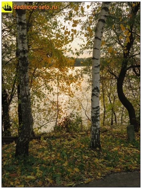 Фото dedinovo-selo.ru_GlareOfTheSunOnTheWater_00006.jpg