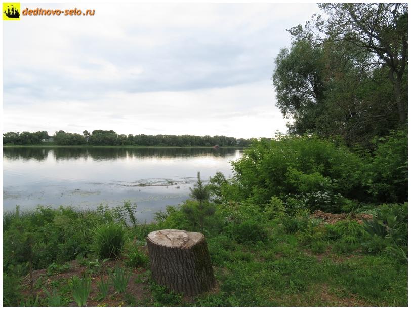 Фото dedinovo-selo.ru_RiverOka-2018_00003.jpg